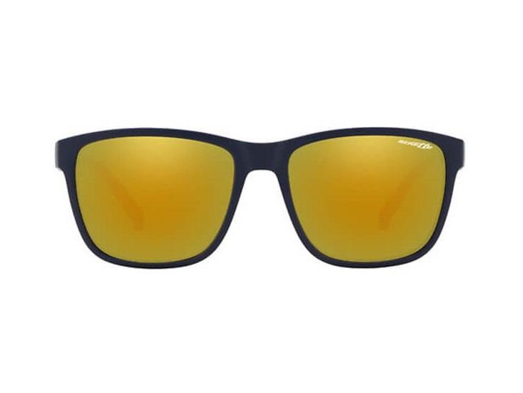 Gafas de sol Arnette AN4255 2587N0